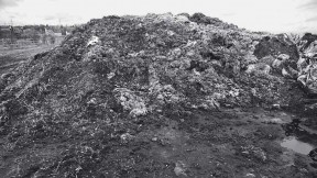Historic photograph of heap of fabric scraps