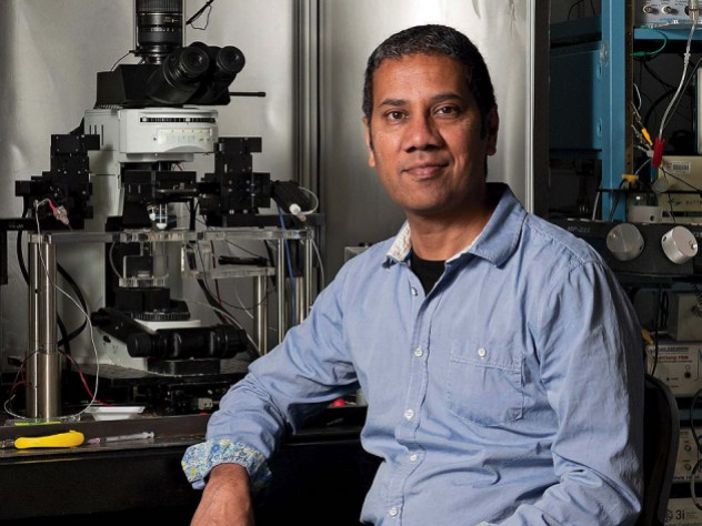 Portrait photo of Venkatesh Murthy in his laboratory
