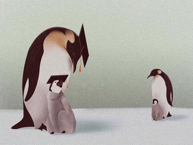 one mother penguin and chick wear college mortarboards, while another mother penguin and her chick don't.