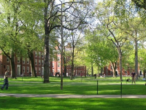 Photograph of Harvard Yard